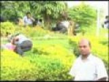 20100608-AB-10-Hyundai Workers Go On Strike In Tamil Nadu India