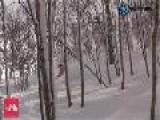 Japan Snow Report - 22th Jan 2011