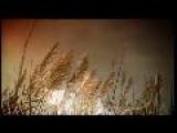 Video Corporativo De La Compa&#241 &#237 A PORTESA