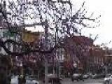 World Realization Day - Ann Arbor Widescreen