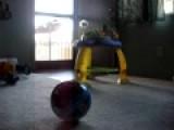 Kamilo Kicking A Ball