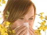 How To Control Your Allergies