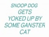 Snoop Dog Gets Yoked Up By