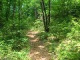 Tallahassee Hiking