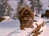 ALPHA ET OMEGA - Bande-Annonce Trailer