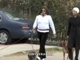 Anjelica Huston Walking Her Dogs And A Man