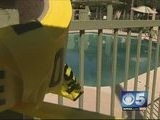 Missing Boy Found Hours Later Dead In Local Pool