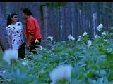 Ram Avatar - 8 15 - Bollywood Movie - Sunny Deol, Anil Kapoor & Sridevi