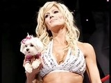 Torrie Wilson Tribute