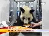 WORLD' S OLDEST PANDA DIES