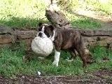 08.12.2010 Gretchen Et Le Ballon