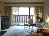 1325 S. Maple, Ann Arbor - Condo For Sale
