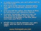 Anchorage Veterinarians-Heal Your Pet At Home