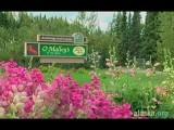 Alaska.org - Anchorage Golf Course - Official Video