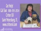 Critter Oil - Natural Pet Care In Saint Petersburg , FL