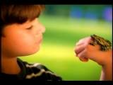 Close Up PROFILE Young Hispanic Boy Looking At Frog On Hand Florida