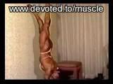 Female Bodybuilding Muscle