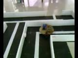 FiNal Year ProjecT &#39 Autonomous Maze PathFinder Robot&#39 @ Bahria UniverSity Karachi Won