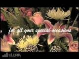 Flowers By June-Florists In Anchorage AK