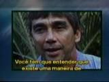 Gerry Lopez 50 Anos Do Rei De Pipeline