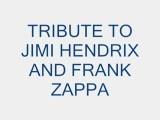 Jimi Hendrix And Zappa Tribute