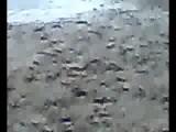 Karachi University Picnic