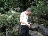 Leeches In Borneo, Malaysia
