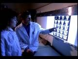 Medium Shot Male Doctor Explaining X Rays To Female Patient In Hospital