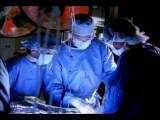 Medium Shot Female And Male Surgeon Watching Lead Surgeon Performing Operation I