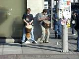 Rideau Centre Drumming - Ottawa