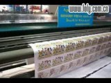Www.loly.com.cn , Taimes 33VCX Solvent Printer Printing Now