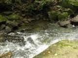 Hiking At Rugged Keeny' S Creek Waterfalls West Virginia 3